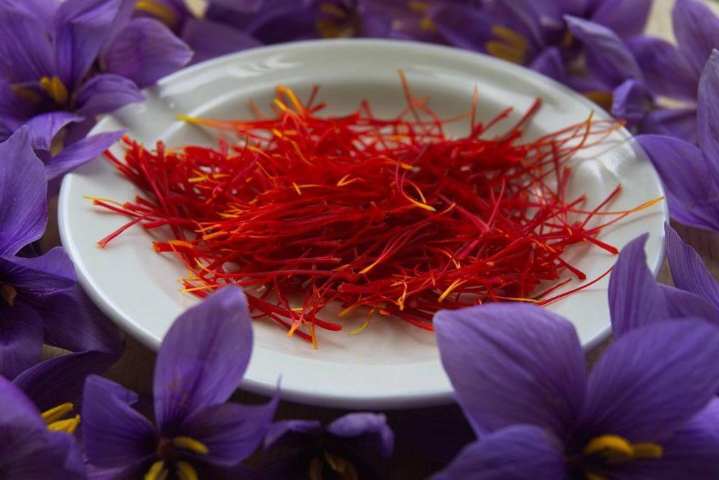 Selain Untuk kecantikan, Bunga Saffron Juga Baik Untuk Kehamilan Lho!